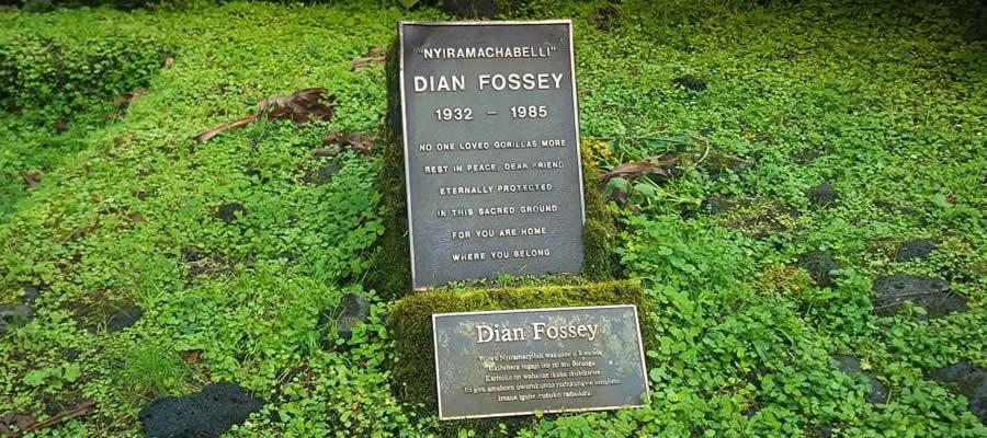 Dian Fossey Tomb Hike Rwanda