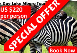 1 Day Lake Mburo Tour in Uganda